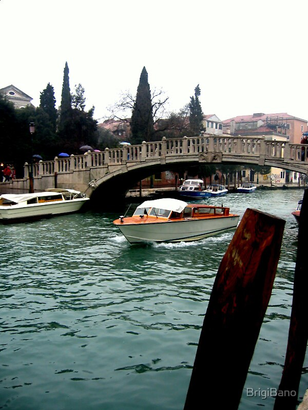 Venice by BrigiBano