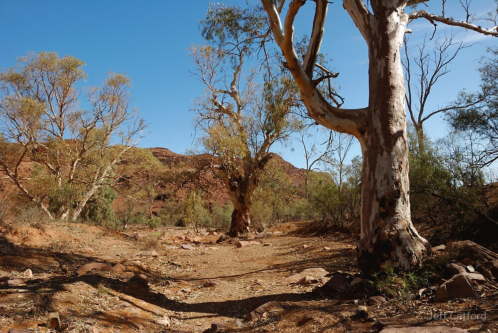Looking Out From Chambers Gorge - Flinders Ranges - South Australia by Jeff Catford