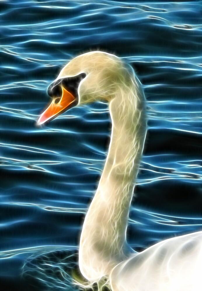 Swan by Lisa Kent