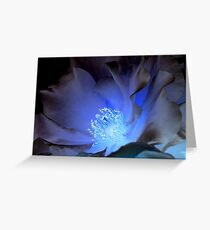 Electric Flower Greeting Card