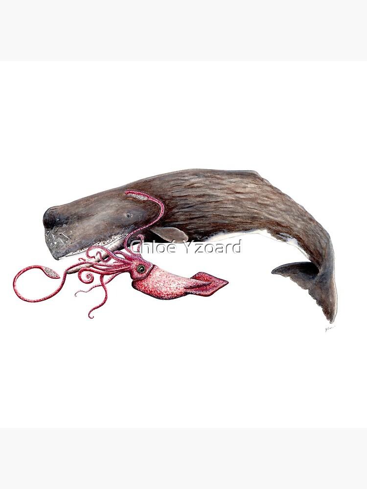 Batalla de cachalote y calamar de CHLOEYZOARD