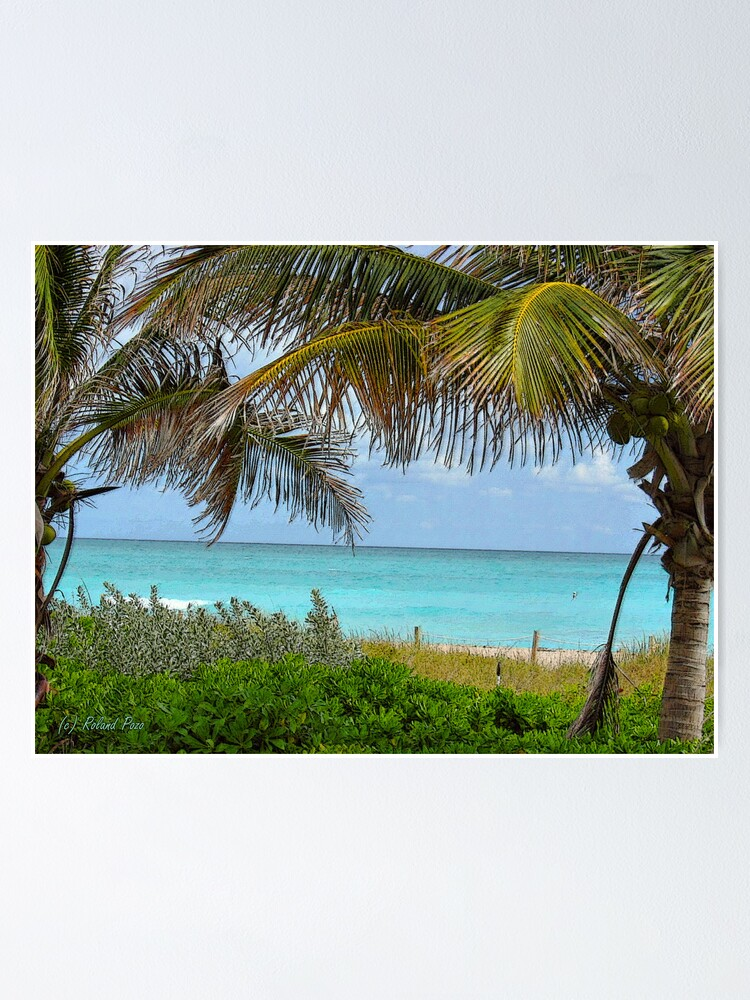 Alternate view of Tropical View Poster