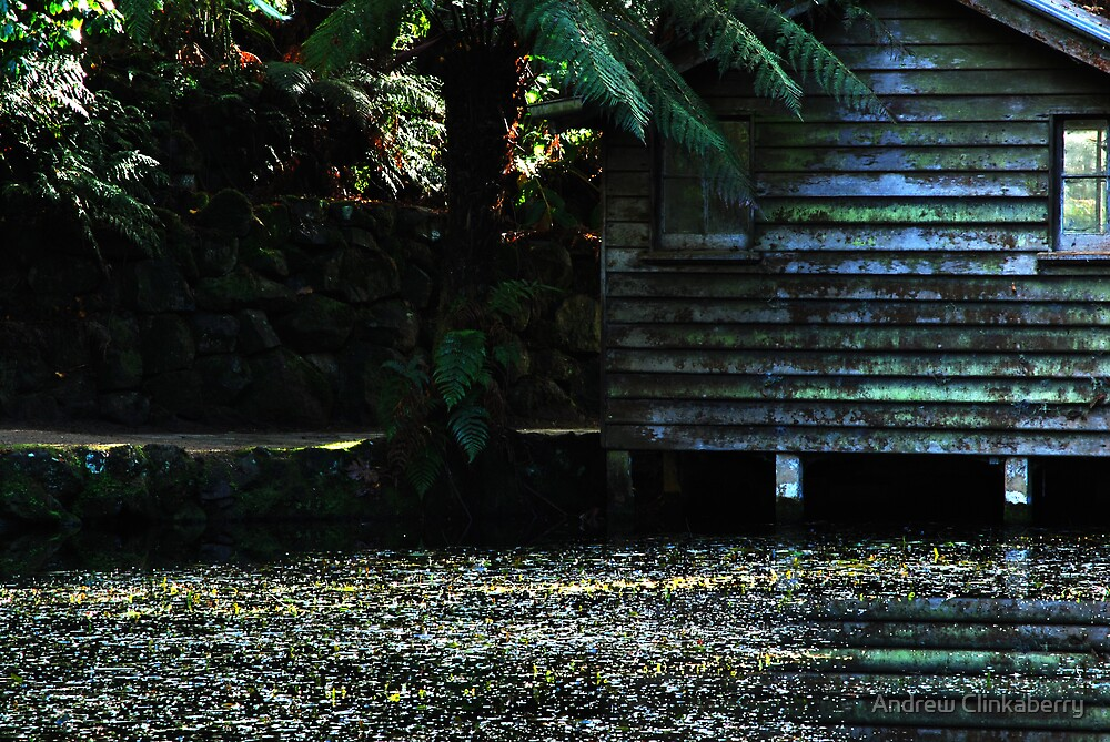 Some Gardens in Olinda by Andrew Clinkaberry
