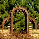 Wooden Arches by R&PChristianDesign &Photography