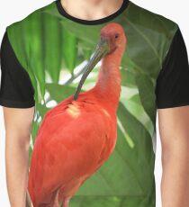 Scarlet Ibis Graphic T-Shirt