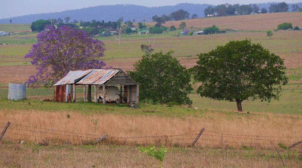 A country view by Tim Everding