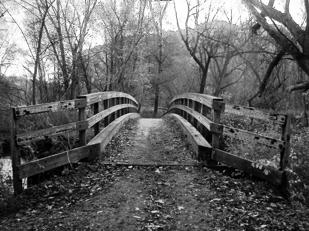 Black and White Bridge by madmac57