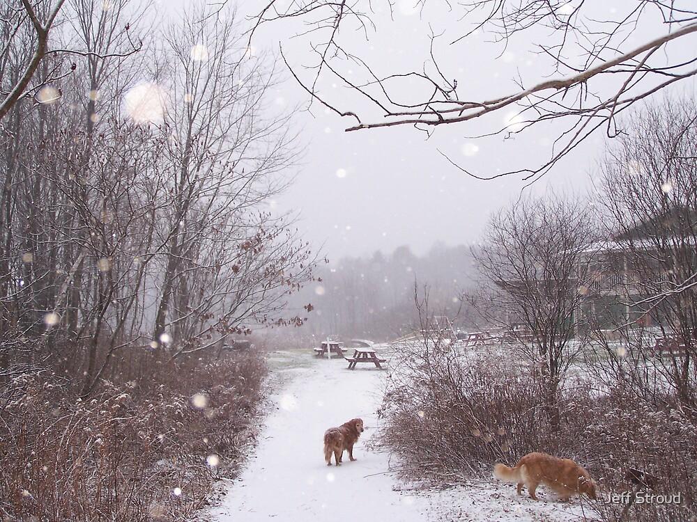 walking in the snow storm II by Jeff stroud