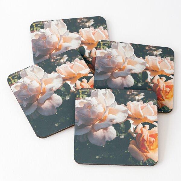 Rose Garden Coasters (Set of 4)