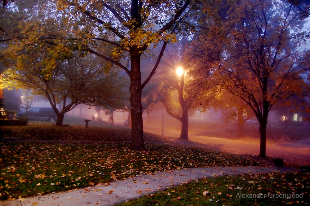 Fog and Silence by Alex Greenwood