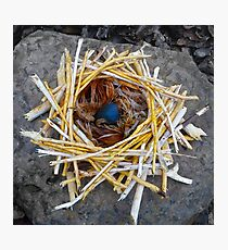 Roc Nest Photographic Print