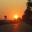 Country Road Sunset by Tammy F