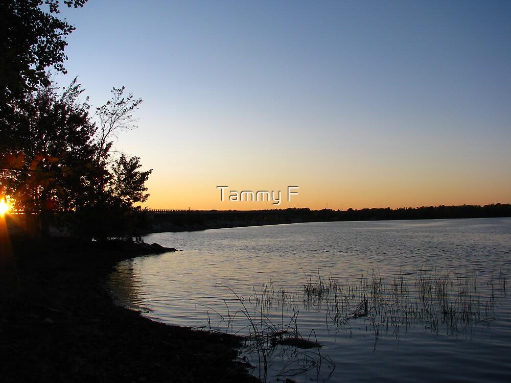 The Bay by Tammy F