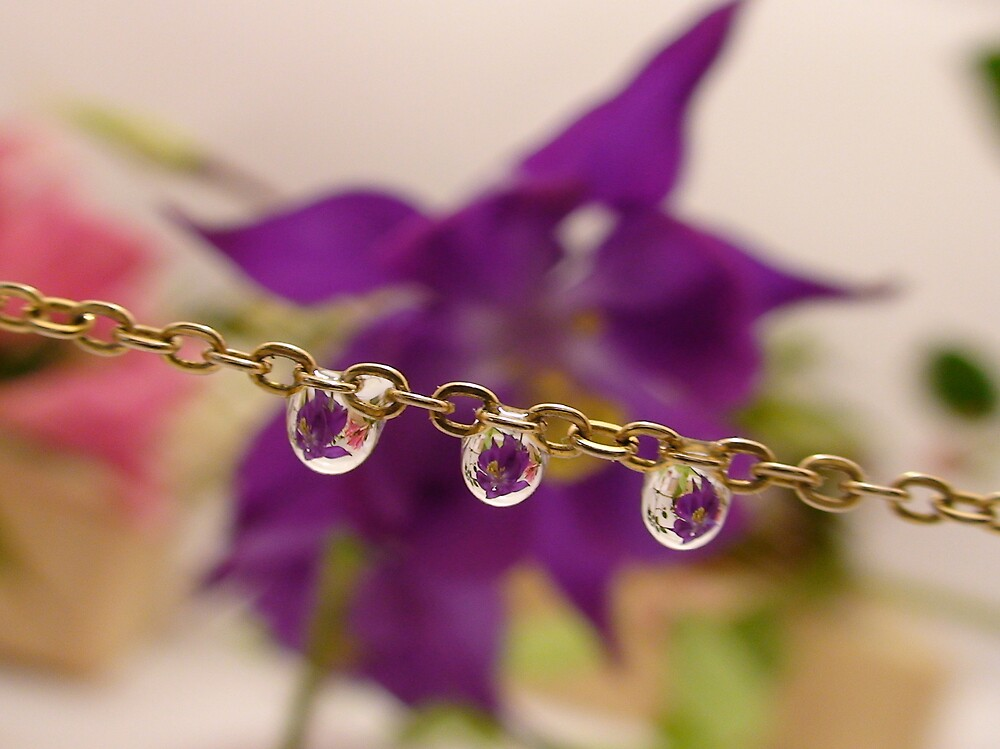 Chain water droplet by len Janes