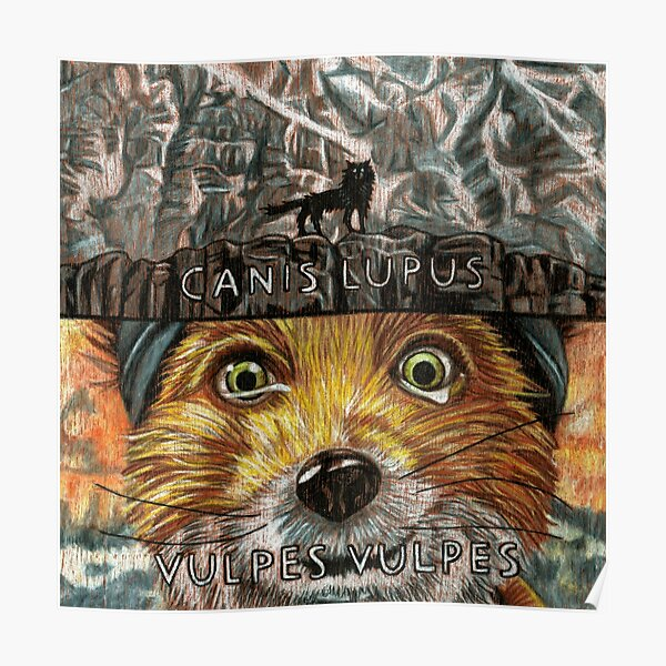 Fantastic Mr Fox Wolf Posters Redbubble