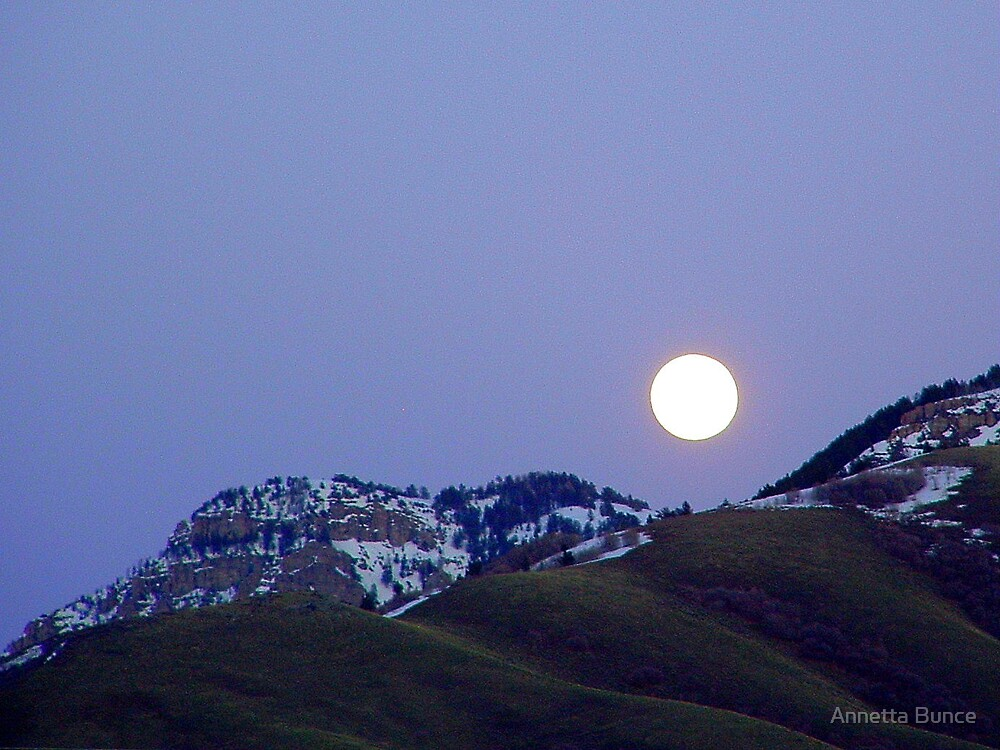 Moonrise by Annetta Bunce