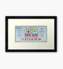 Lung Volumes and Capacities Framed Print
