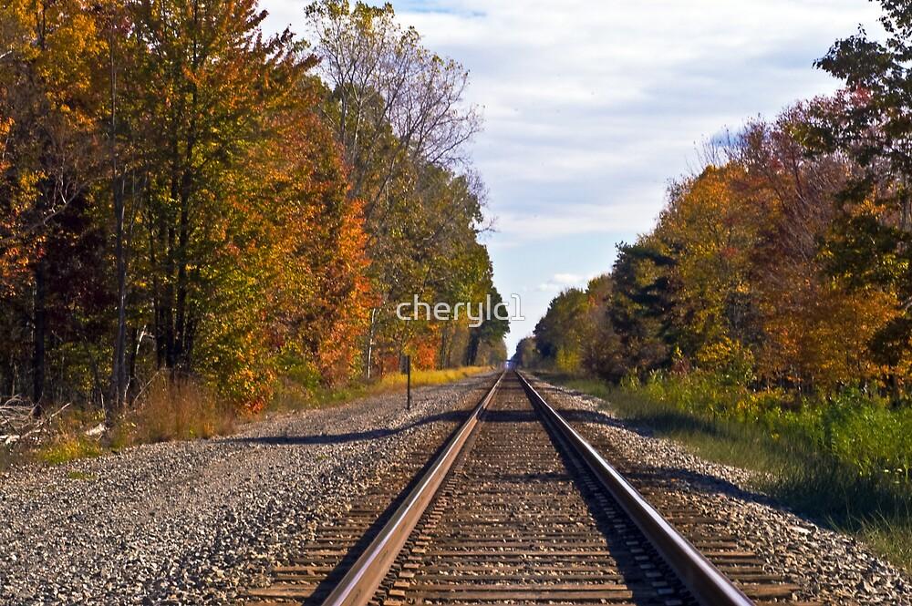 Autumn Tracks by cherylc1