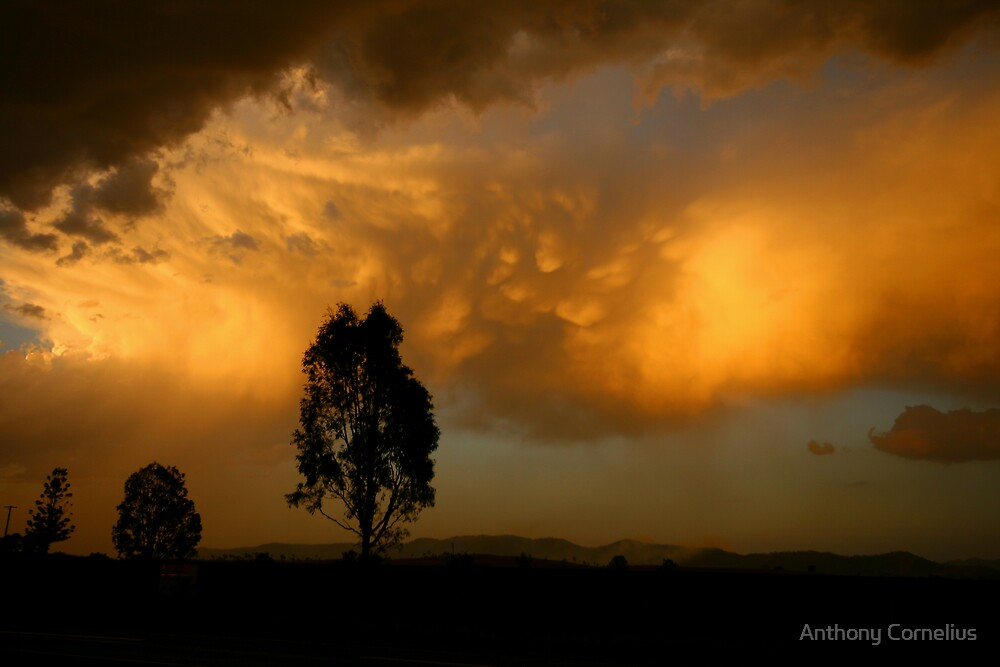 Kilcoy Sunset by Anthony Cornelius