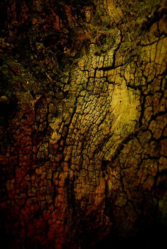 Treescape I by Bojoura Stolz