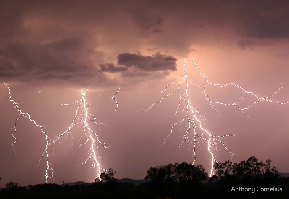 Ulmurra Lightning by Anthony Cornelius
