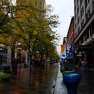 Denver Shopping District by Pamela Hubbard