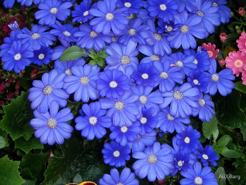 Feeling Blue by AuXillary
