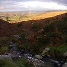 Barton Fell Nov 1st 2008 by Maria Taylor