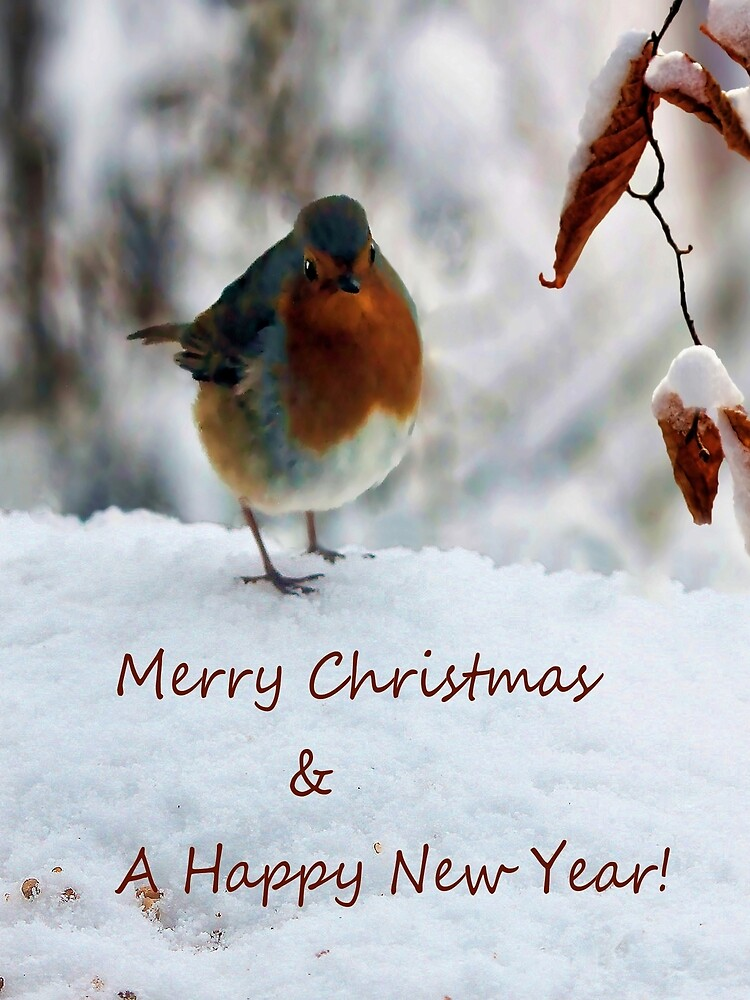Robin Redbreast  by Valerie Anne Kelly