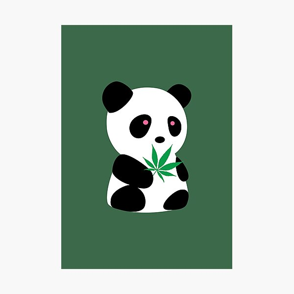 "Panda with ""recreational bamboo"" Photographic Print"