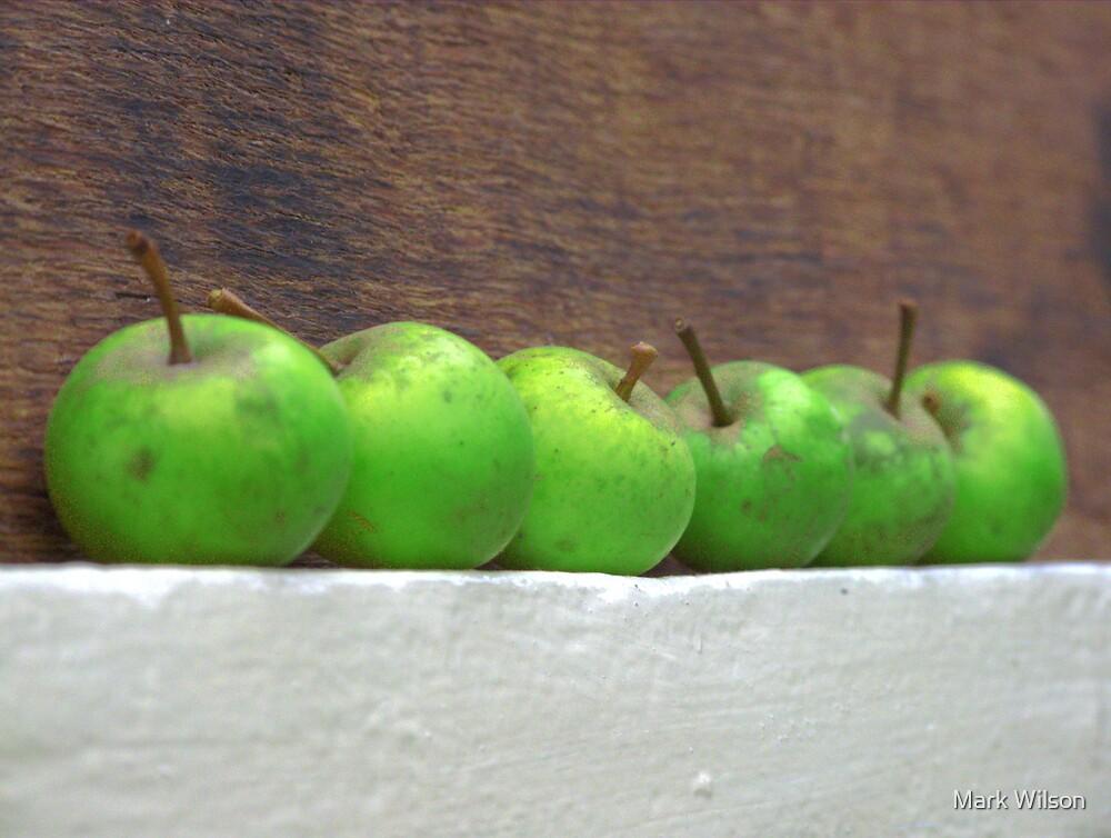 An Apple A Day by Mark Wilson