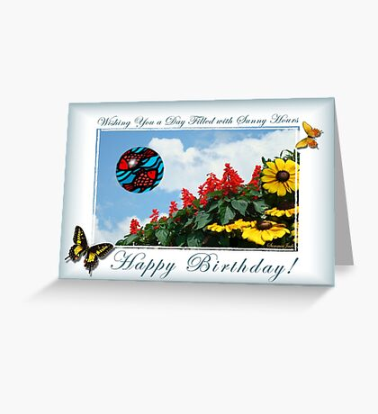 Birthday Fun ~ Catch That Beach Ball! Greeting Card