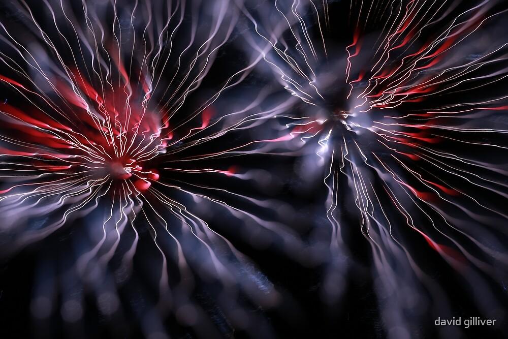 fireworks 18/11/17 by david gilliver