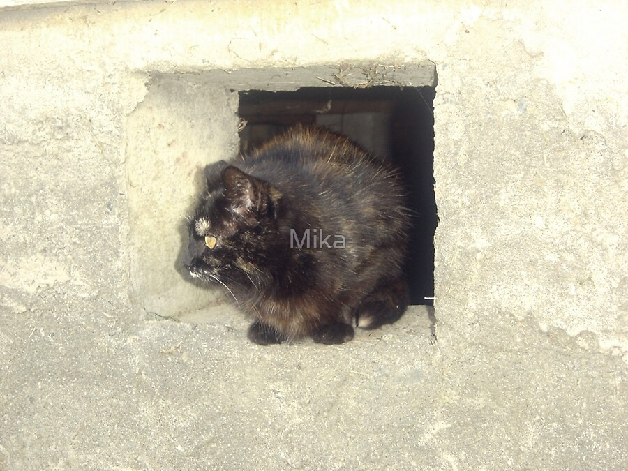 Look out by Mika