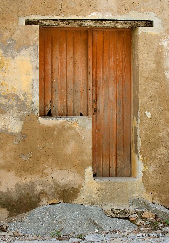 Door and a Half by Marie Watt