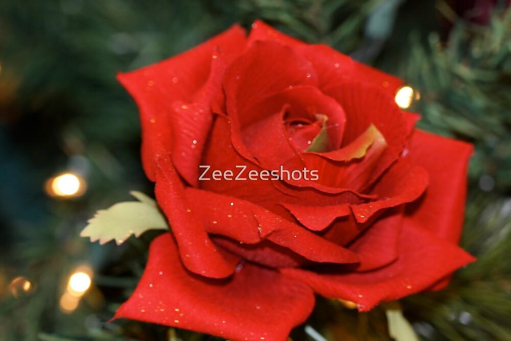 A Christmas Rose by ZeeZeeshots
