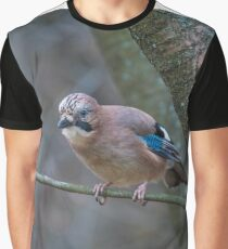 Close up of a beautiful Eurasian Jay with bright colorful feathers sitting on a tree Graphic T-Shirt