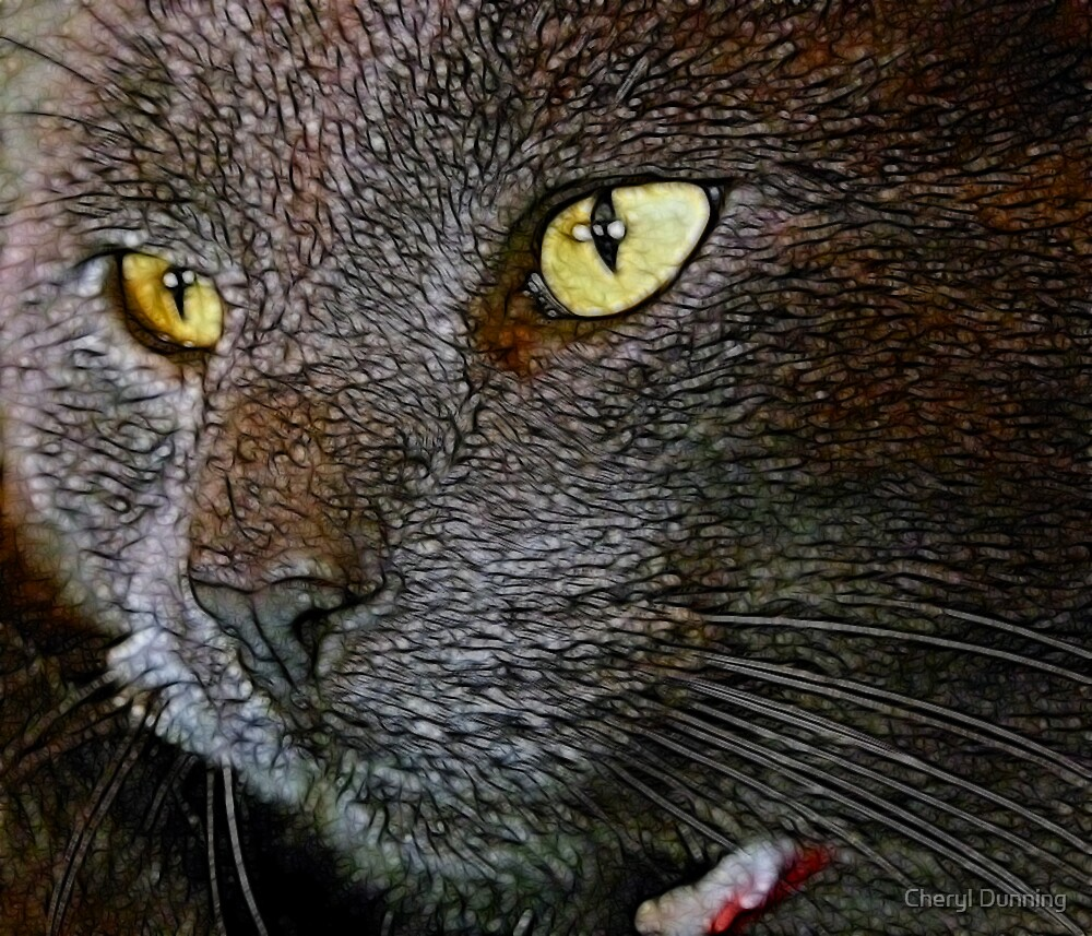 up close by Cheryl Dunning