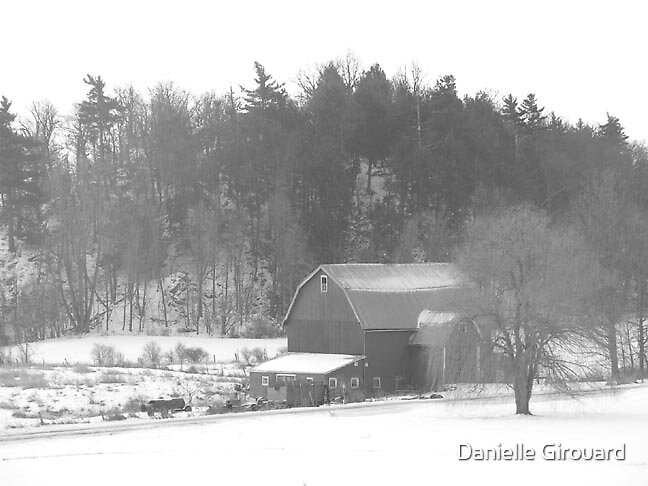 Cold day by Danielle Girouard