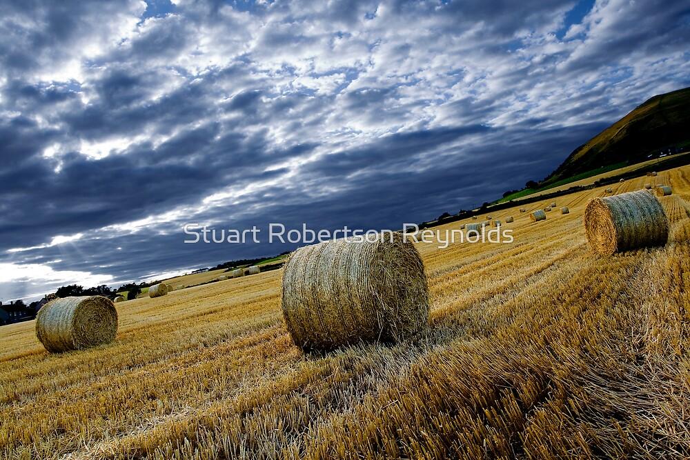 Straw Bales by Stuart Robertson Reynolds
