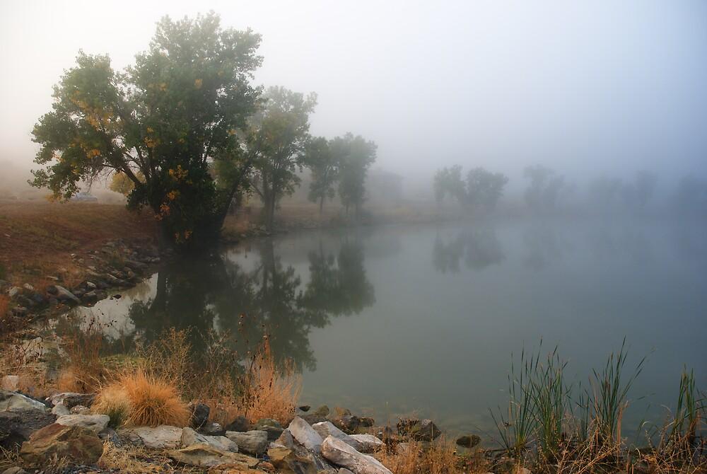 Morning Fog at Shadow Lake, Colorado by Linda J Armstrong