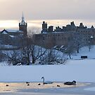 Snowy Linlithgow Palace ( Wentworth Prison in  Outlander) by David Rankin
