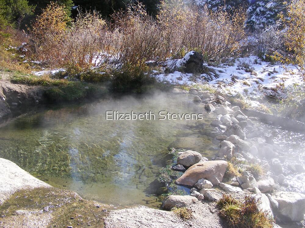 Idaho Hot Springs by Elizabeth Stevens