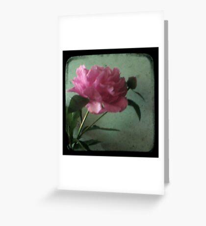 Grandma's Peonie - Still Life TTV Greeting Card