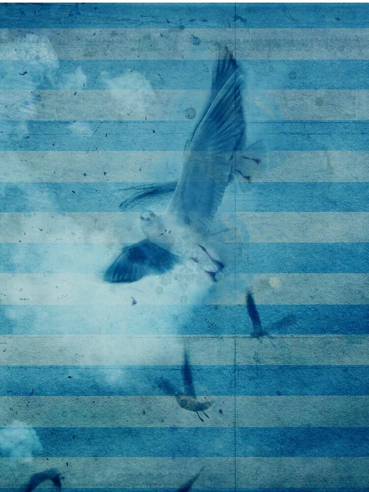 seagull in cyan 2 by fredlevy-hadida