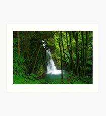 Salto do Prego waterfall Art Print