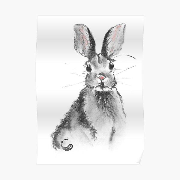 Rabbit Bunny (Charcoal Animals) Poster