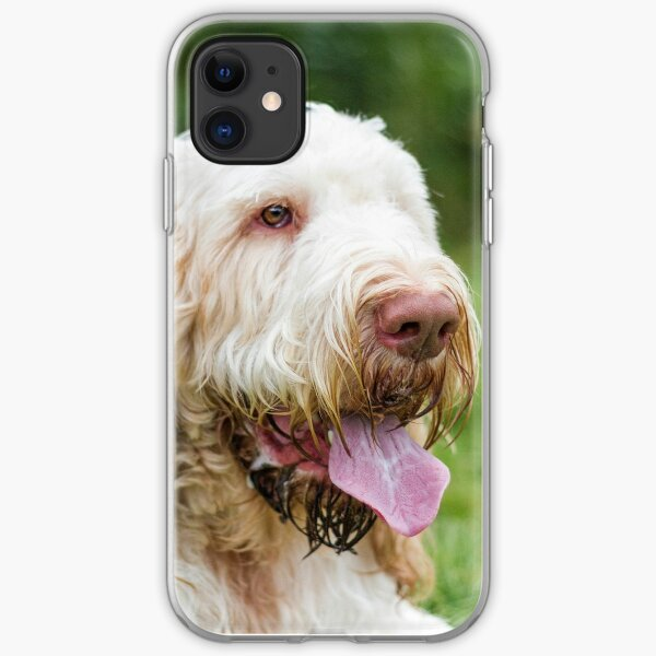Relax and take it easy Spinone  iPhone Soft Case