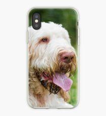 Orange and White Italian Spinone Dog Head Shot iPhone Case