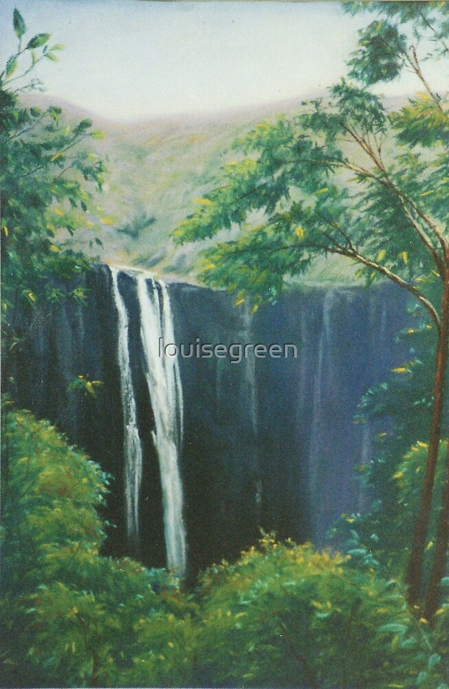 Ellenborough Falls, NSW by louisegreen